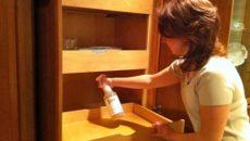 Использование химии для обработки помещения от блох