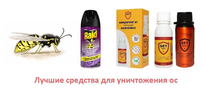 Лучшие химические средства для уничтожения ос