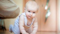 Ребенок в 8 месяцев развитие и питание