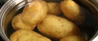 Как правильно и сколько времени варить картошку